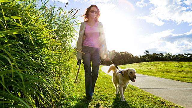 Passeggiata intorno al residence Solei con il cane